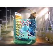 태양광 활용, 고효율·고내구성 과산화수소 광전기화학전지