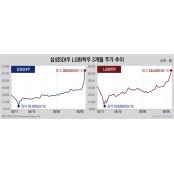 [Invest]2차전지로 옮겨 붙은 배당성향 우선주 투자…배당 기대 배당성향 없어도 일단 산다 배당성향