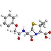 기존 항생제 무용지물… 세파계열 항생제 개발비 경감위한 지원 세파계열 항생제 시급