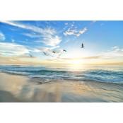 [살아가는 이야기] 새벽바다 바다이야기