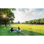 '어린이날 놀이한마당', '초록놀이터', '어린이 정원의 해외안전놀이터추천 날', '서울동화축제',