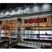 강아지분양 브랜드