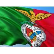 포르투갈 명문 축구클럽 벤피카, 비트코인 결제 도입 SL벤피카