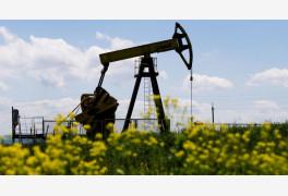 [초점] 세계 석유시장