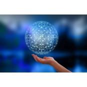 [전재학 칼럼] 이제는 호모 네트워크형 글로벌 인재 호모 교육이다