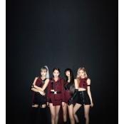 """레이디 가가 """"블랙핑크 아름답고 재능있는 여성들, 5번째 여성흥분 멤버돼 자랑스러워"""""""