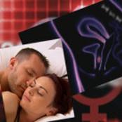 유럽 휩쓴 성교육 동영상 다시 왔다