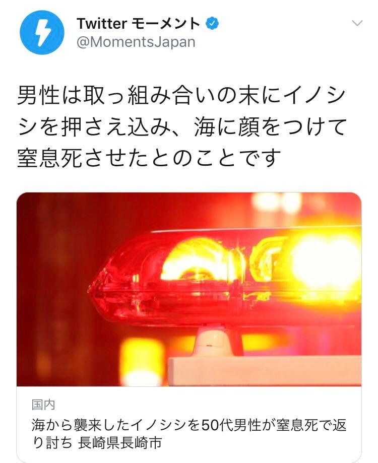 長崎 イノシシ
