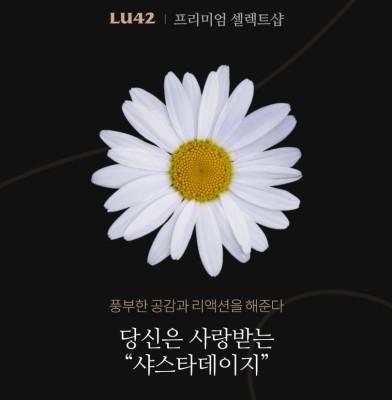 꽃 테스트 , 꽃 심리테스트, 꽃으로 보는 mbti | 블로그
