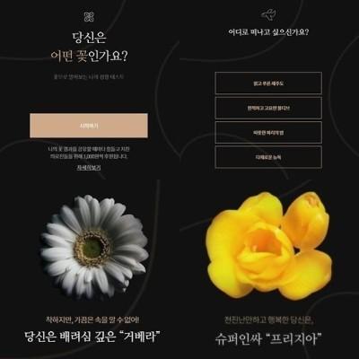 이런 예쁜 MBTI 검사까지?…온라인 달군 '꽃 테스트' 뭐길래 | 포토뉴스