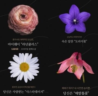 `꽃 MBTI 테스트` 어디서 확인?... 온라인 뜨겁게 달군 한 장의 사진 `화제 만발` | 포토뉴스