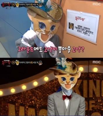 '복면가왕' 부뚜막고양이 정체는 양요섭? | 포스트