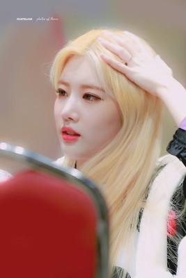 이달의소녀 김립 & 지우 - 걸그룹 갤러리 - 에펨코리아 이달의소녀 김립 & 지우 | 웹