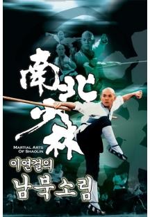 이연걸의 남북소림 1986